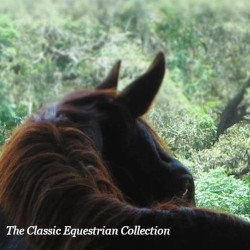 The Classic Equestrian Collection