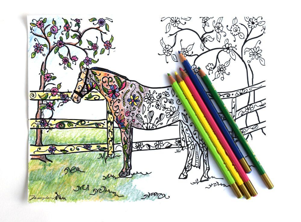 pretty pasture color example