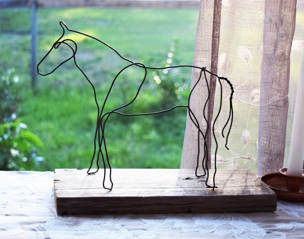 wire horse resilient 1b 72 dpi 1000x
