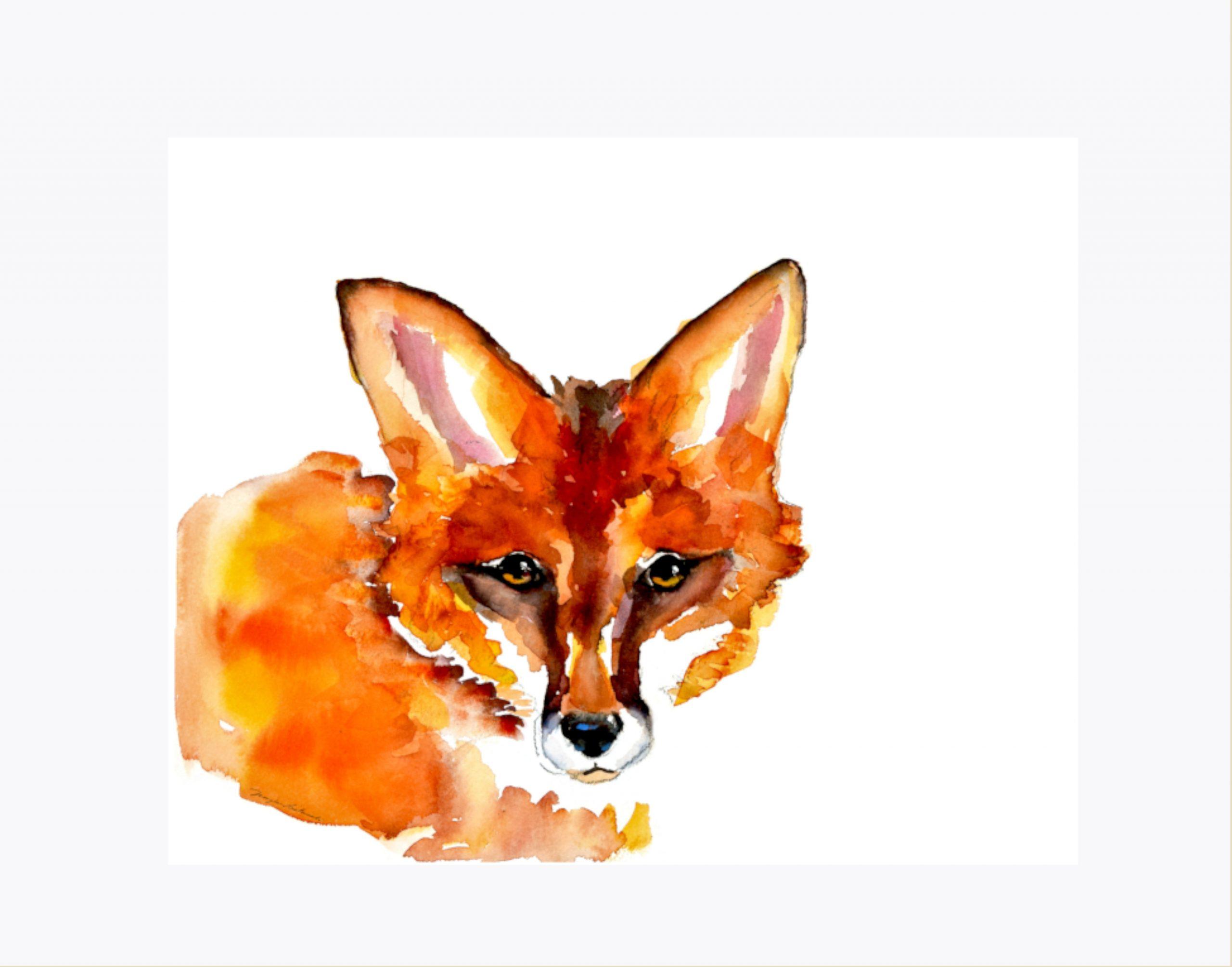 peeking red fox with mat 72 dpi