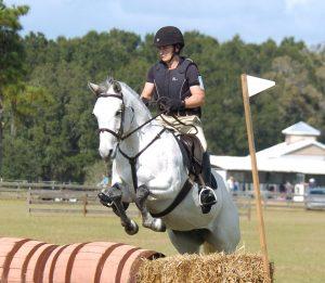 cross cuntry jumping grey pony