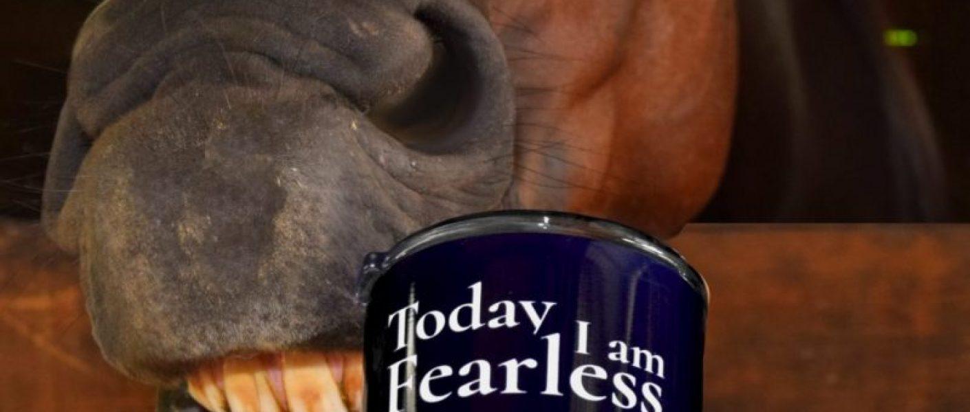 Fearless Equestrian